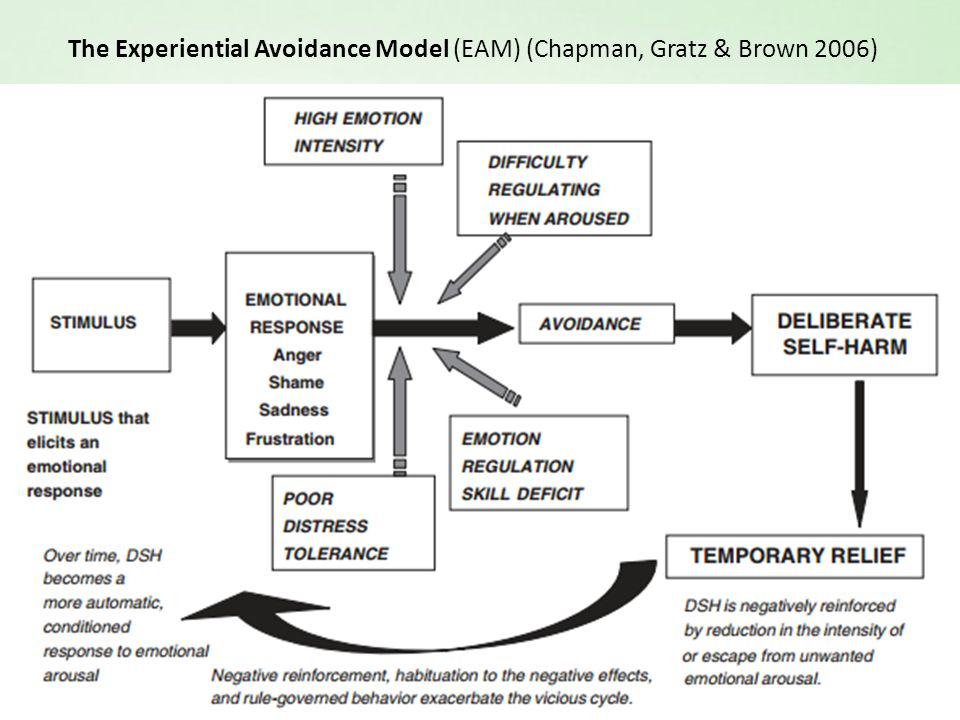 The Experiential Avoidance Model (EAM) (Chapman, Gratz & Brown 2006)