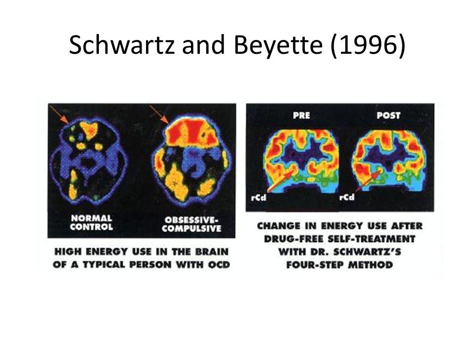 Schwartz and Beyette (1996)