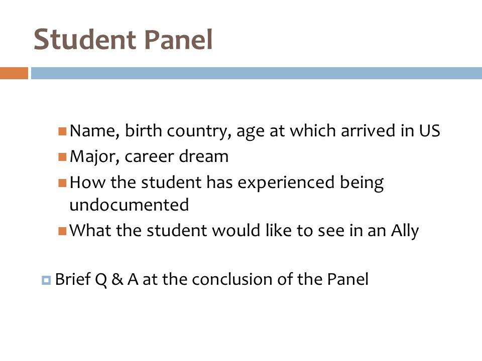 Name, birth country, age at which arrived in US Major, career dream How the student has experienced being undocumented What the student would like to see in an Ally  Brief Q & A at the conclusion of the Panel Stu dent Panel