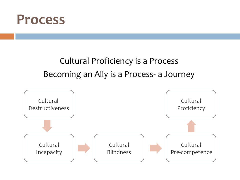 Cultural Proficiency is a Process Becoming an Ally is a Process- a Journey Process Cultural Destructiveness Cultural Incapacity Cultural Blindness Cultural Pre-competence Cultural Proficiency