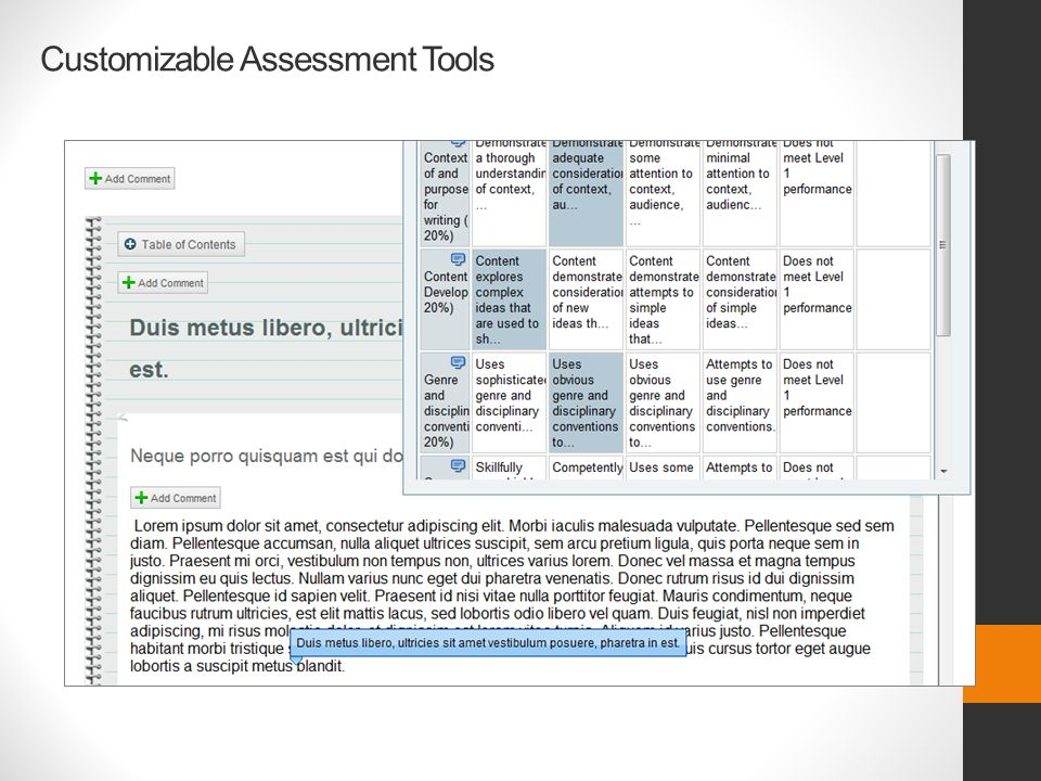 Customizable Assessment Tools
