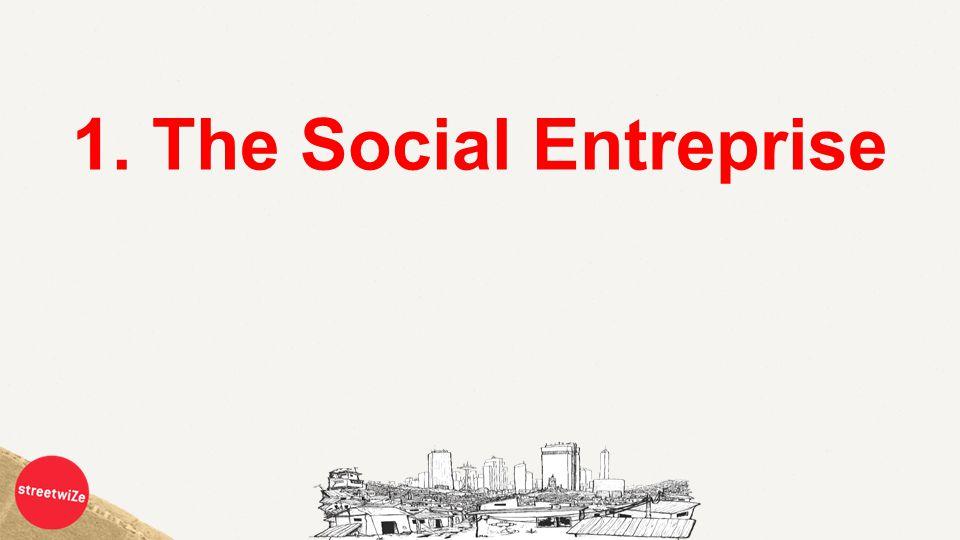 1. The Social Entreprise