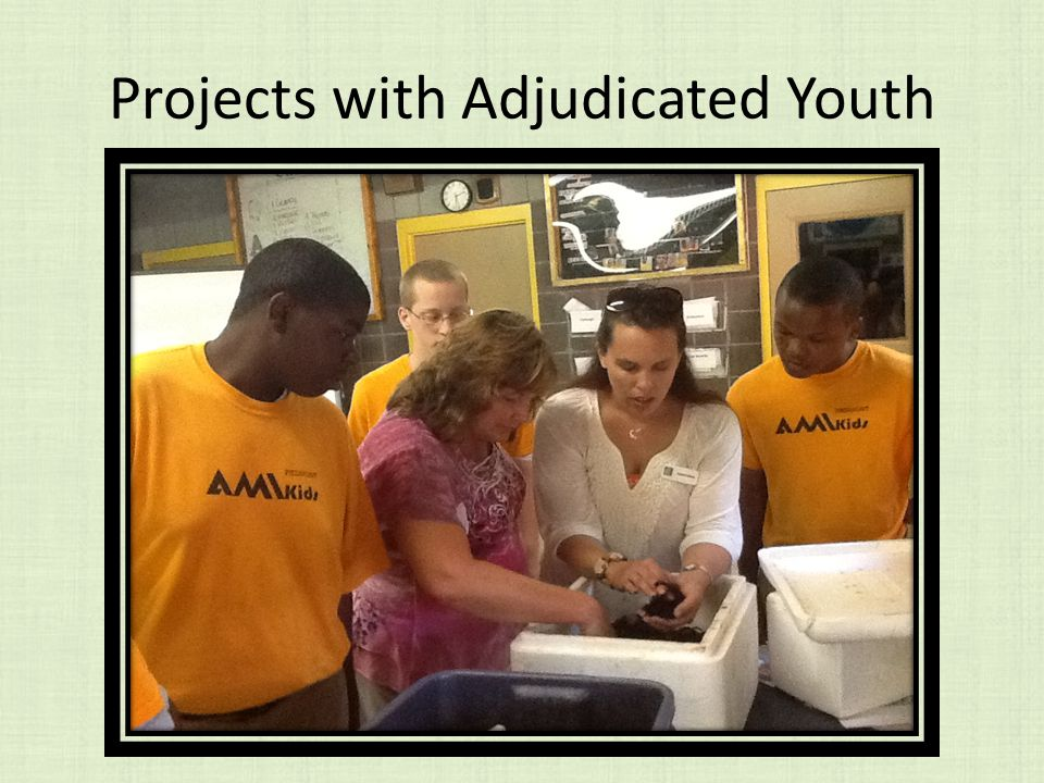 Projects with Adjudicated Youth