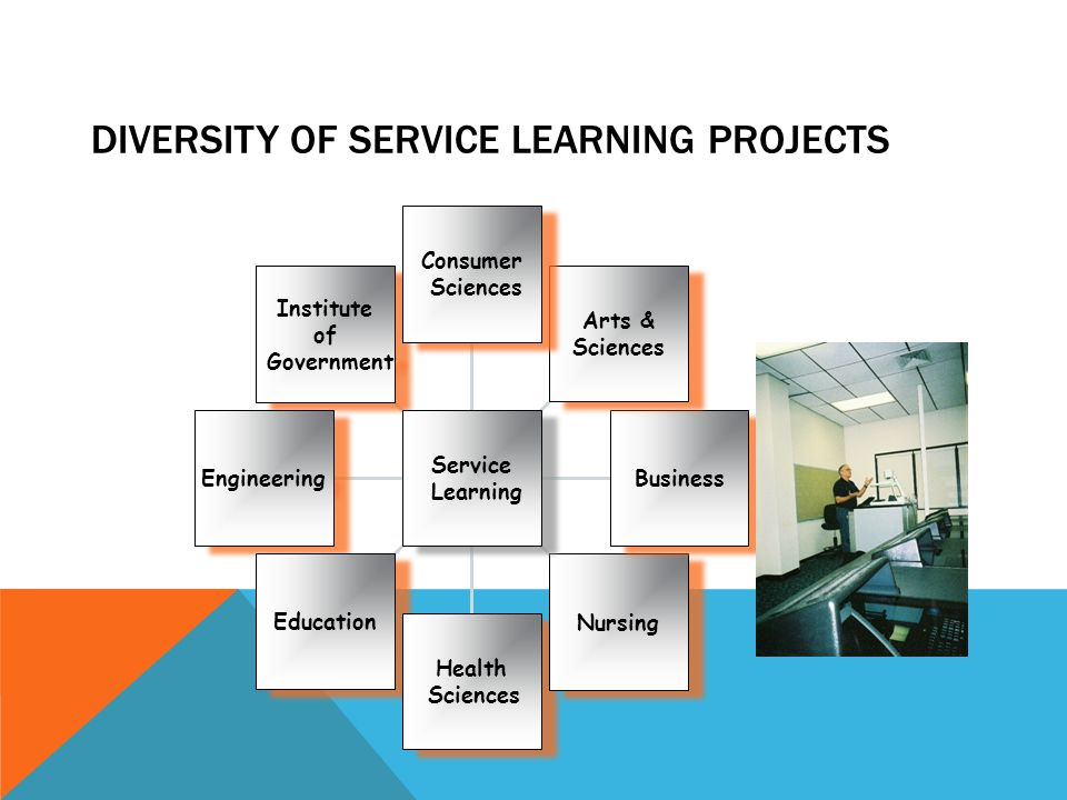 DIVERSITY OF SERVICE LEARNING PROJECTS Institute of Government Institute of Government Engineering Education Health Sciences Health Sciences Nursing B