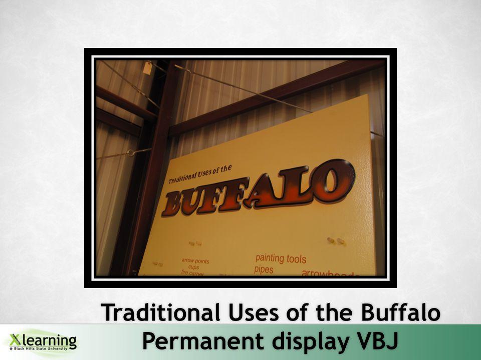 Traditional Uses of the Buffalo Permanent display VBJ