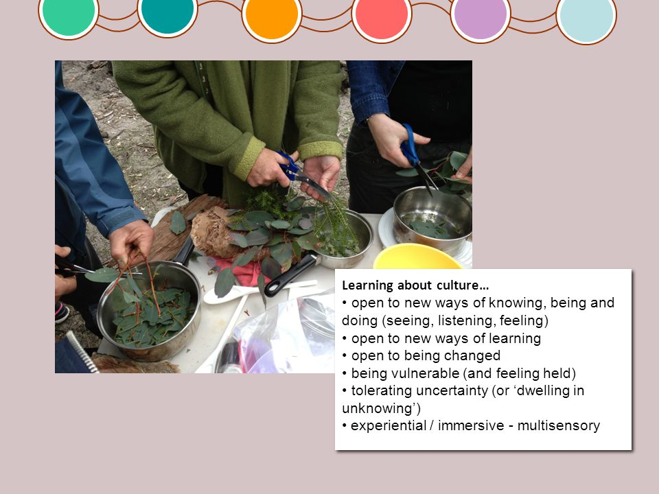 Learning about culture… open to new ways of knowing, being and doing (seeing, listening, feeling) open to new ways of learning open to being changed b