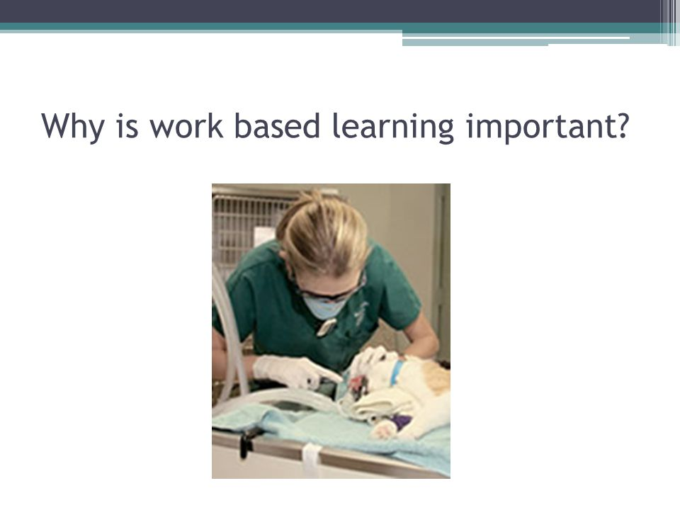 Why is work based learning important?