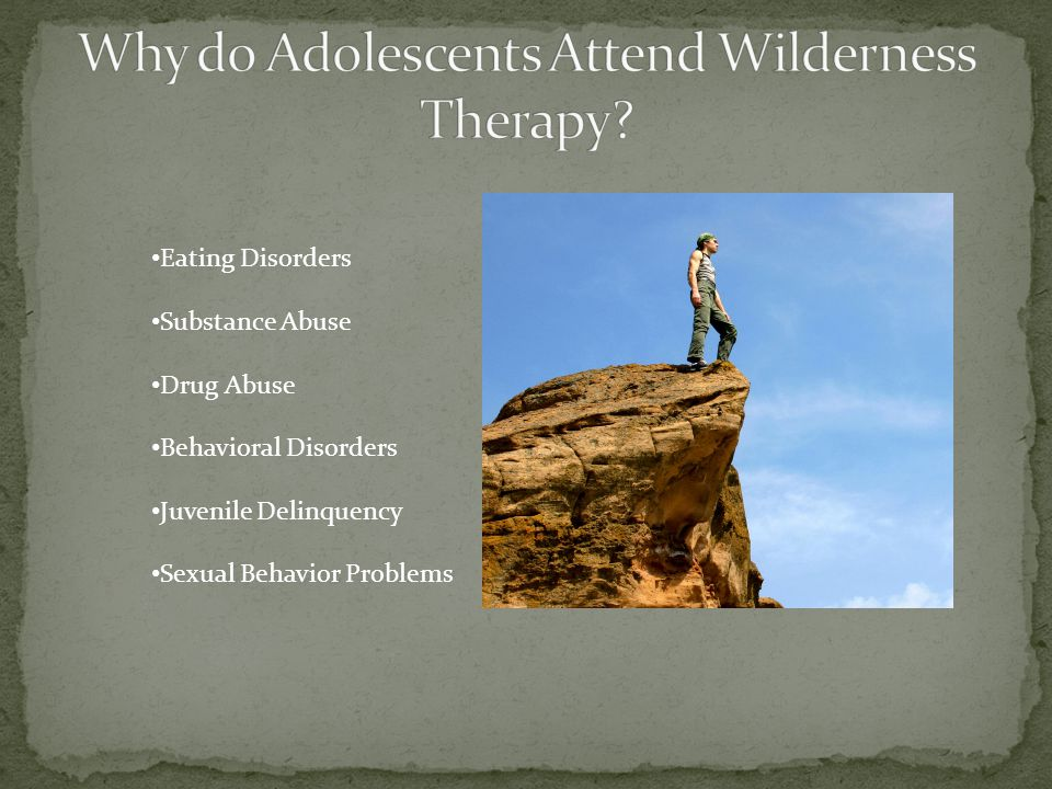 Eating Disorders Substance Abuse Drug Abuse Behavioral Disorders Juvenile Delinquency Sexual Behavior Problems