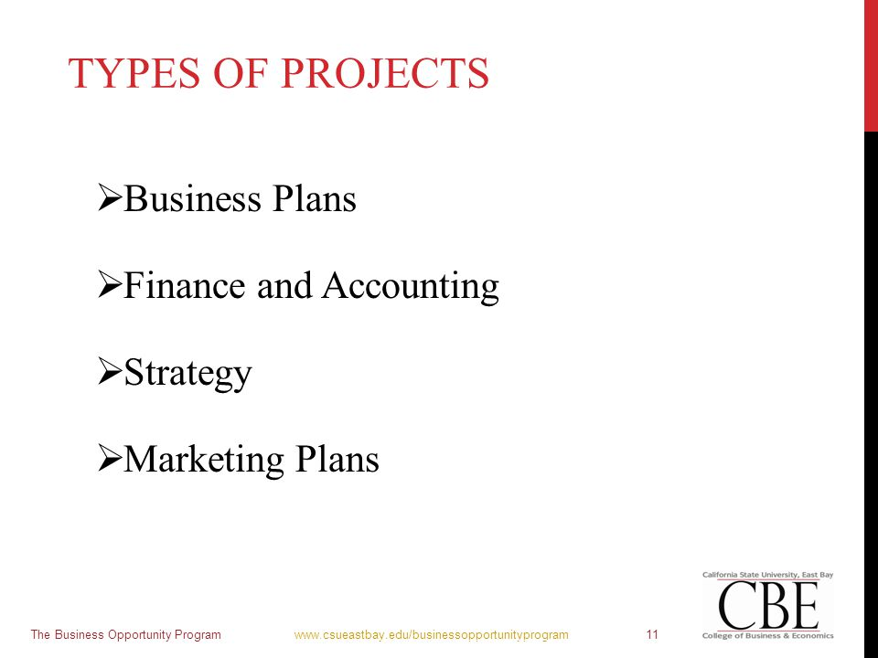 TYPES OF PROJECTS  Business Plans  Finance and Accounting  Strategy  Marketing Plans The Business Opportunity Program www.csueastbay.edu/businesso