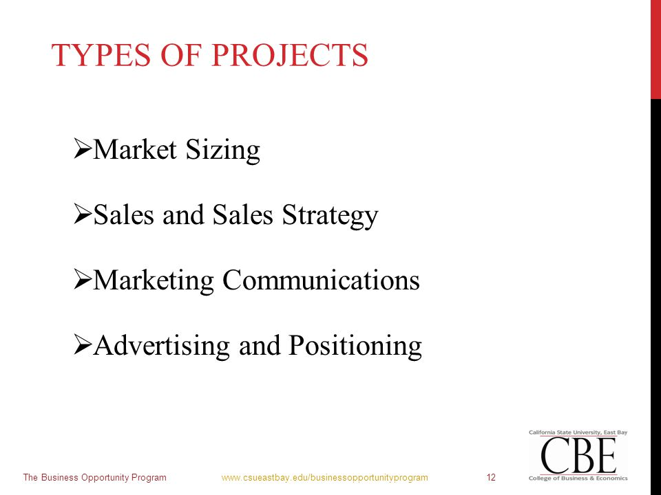 TYPES OF PROJECTS  Market Sizing  Sales and Sales Strategy  Marketing Communications  Advertising and Positioning The Business Opportunity Program