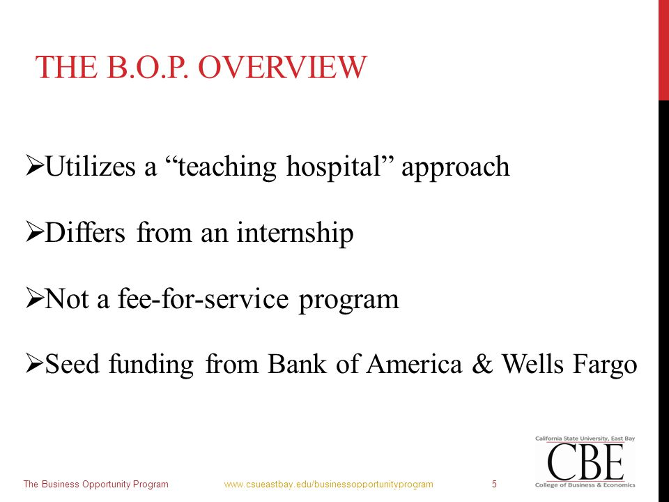 "THE B.O.P. OVERVIEW  Utilizes a ""teaching hospital"" approach  Differs from an internship  Not a fee-for-service program  Seed funding from Bank of"