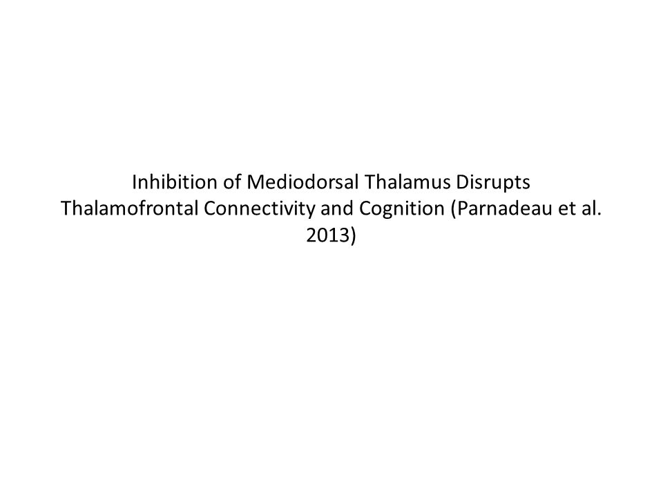 Inhibition of Mediodorsal Thalamus Disrupts Thalamofrontal Connectivity and Cognition (Parnadeau et al. 2013)