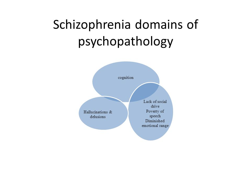 Schizophrenia domains of psychopathology cognition Lack of social drive Poverty of speech Diminished emotional range Hallucinations & delusions