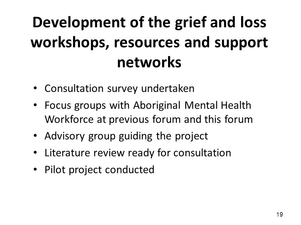 19 Development of the grief and loss workshops, resources and support networks Consultation survey undertaken Focus groups with Aboriginal Mental Health Workforce at previous forum and this forum Advisory group guiding the project Literature review ready for consultation Pilot project conducted
