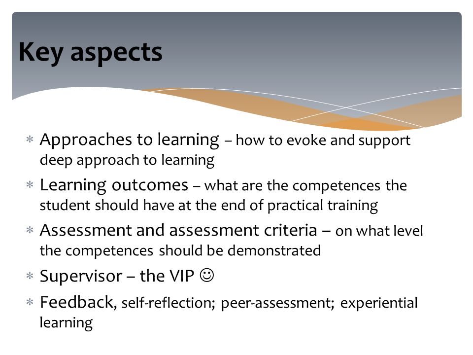  Approaches to learning – how to evoke and support deep approach to learning  Learning outcomes – what are the competences the student should have at the end of practical training  Assessment and assessment criteria – on what level the competences should be demonstrated  Supervisor – the VIP  Feedback, self-reflection; peer-assessment; experiential learning Key aspects