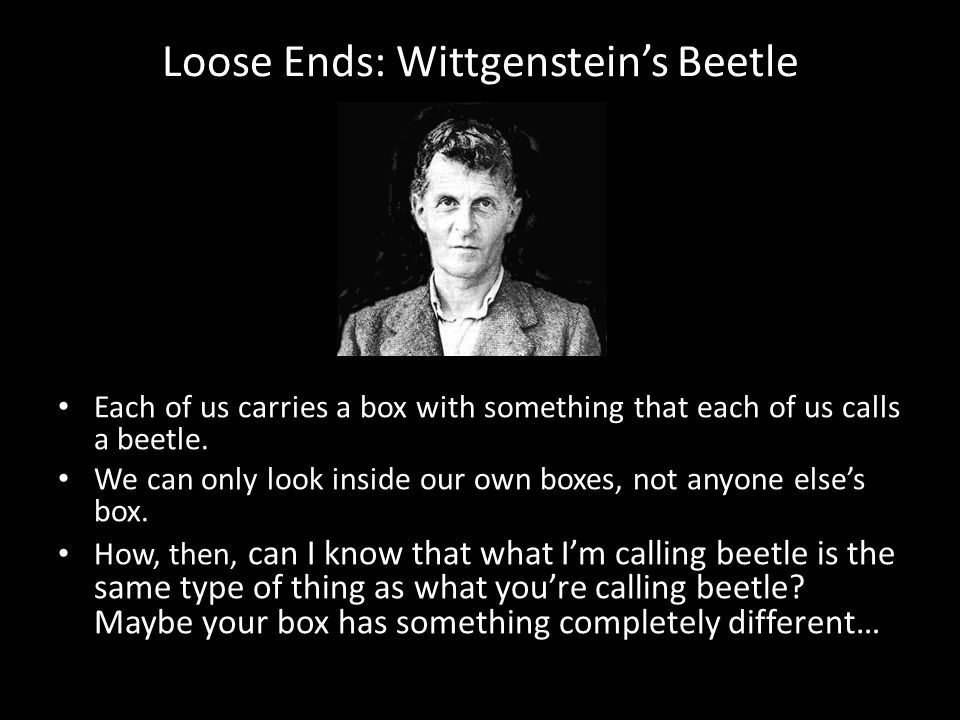 Loose Ends: Wittgenstein's Beetle Each of us carries a box with something that each of us calls a beetle. We can only look inside our own boxes, not a