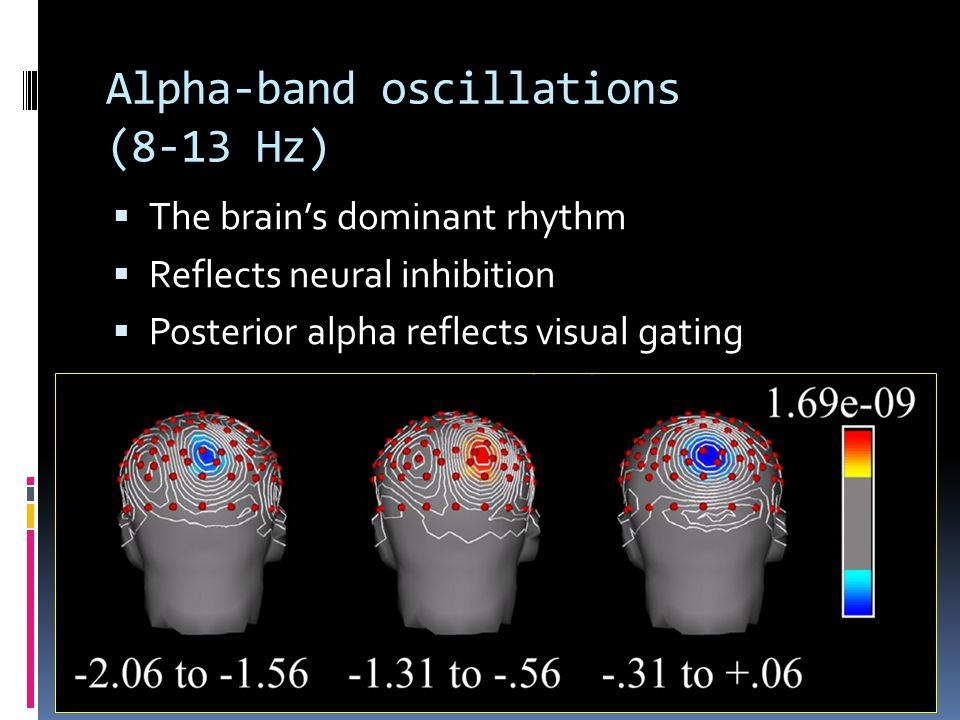 Alpha-band oscillations (8-13 Hz)  The brain's dominant rhythm  Reflects neural inhibition  Posterior alpha reflects visual gating