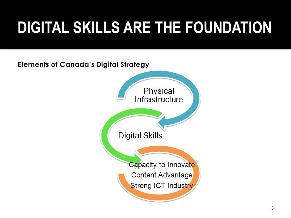 DIGITAL SKILLS ARE THE FOUNDATION 3 Physical Infrastructure Digital Skills Capacity to Innovate Content Advantage Strong ICT Industry Elements of Canada's Digital Strategy