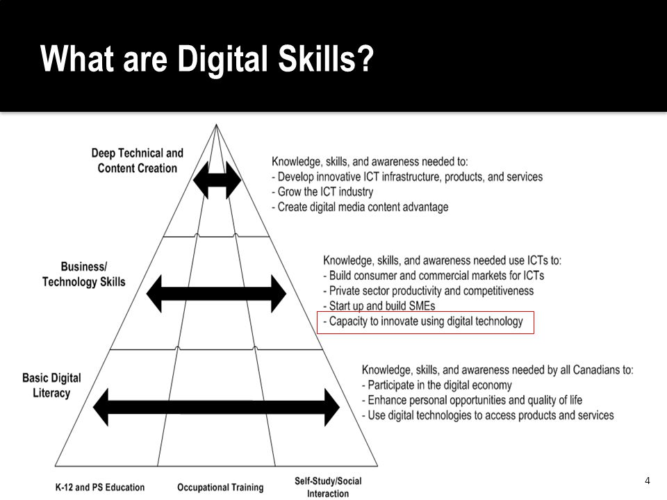 What are Digital Skills 4
