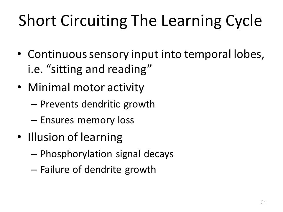 Short Circuiting The Learning Cycle Continuous sensory input into temporal lobes, i.e.