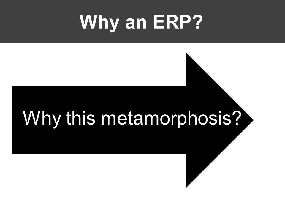 Why an ERP Why this metamorphosis
