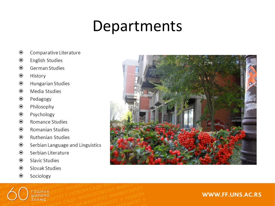 Departments  Comparative Literature  English Studies  German Studies  History  Hungarian Studies  Media Studies  Pedagogy  Philosophy  Psychology  Romance Studies  Romanian Studies  Ruthenian Studies  Serbian Language and Linguistics  Serbian Literature  Slavic Studies  Slovak Studies  Sociology