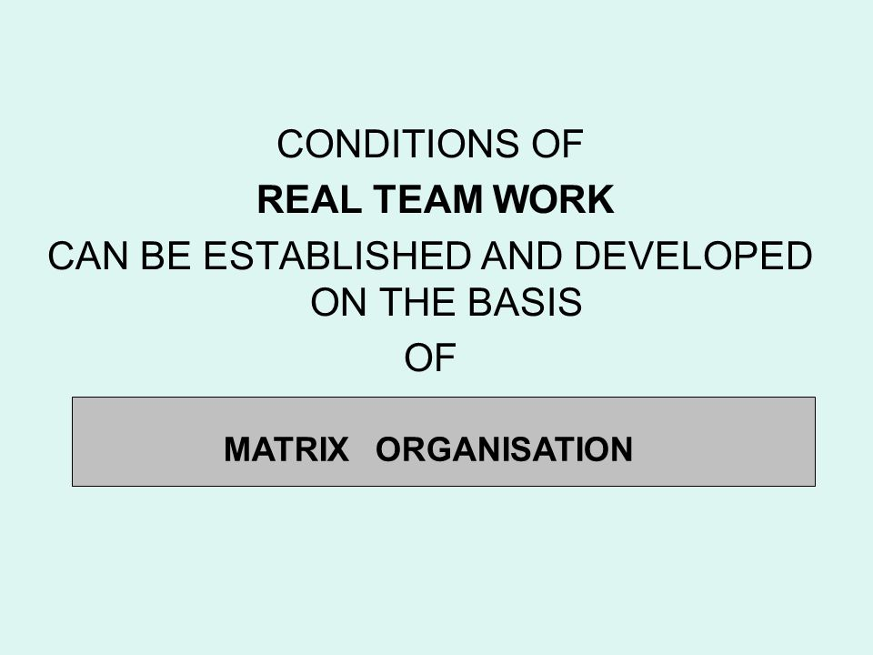 CONDITIONS OF REAL TEAM WORK CAN BE ESTABLISHED AND DEVELOPED ON THE BASIS OF MATRIX ORGANISATION