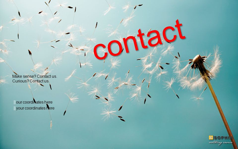 contact your coordinates here our coordinates here Make sense Contact us. Curious Contact us.