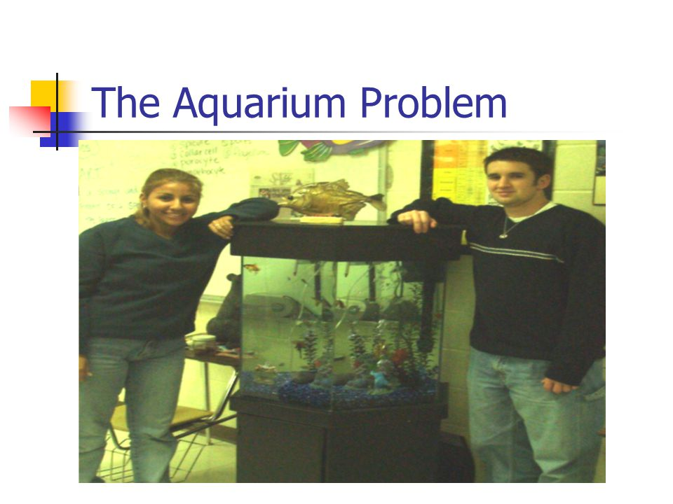 Two Powerfully, Personal PBL High School Examples The Aquarium Problem The Biodome