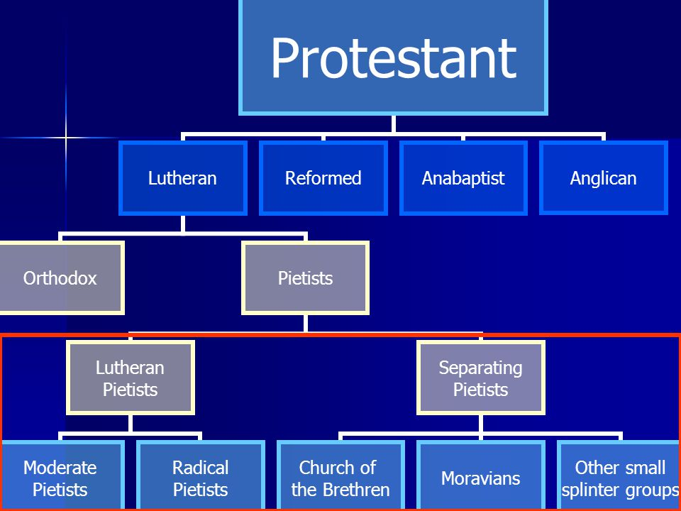 Protestant Lutheran OrthodoxPietists Lutheran Pietists Moderate Pietists Radical Pietists Separating Pietists Church of the Brethren Moravians Other small splinter groups ReformedAnabaptistAnglican