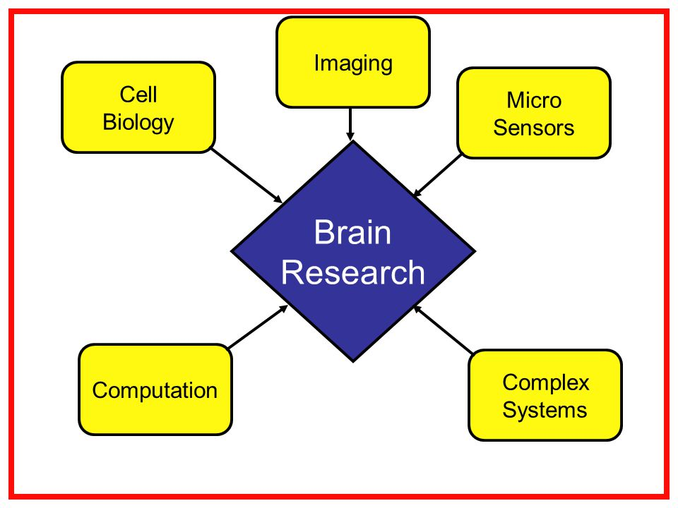 Brain Research Cell Biology Complex Systems Computation Micro Sensors Imaging