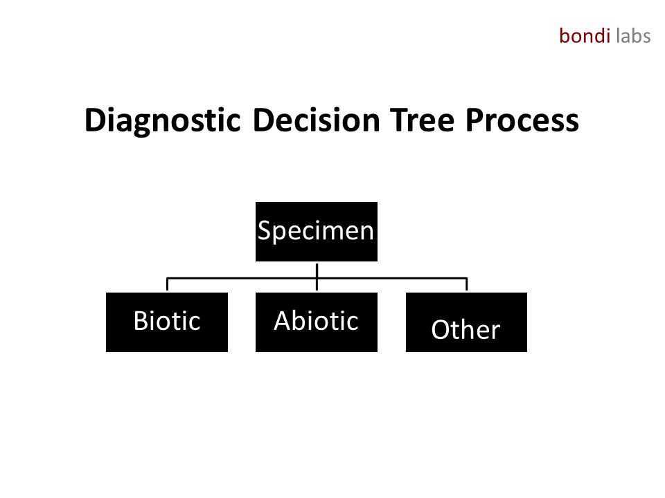 bondi labs Diagnostic Decision Tree Process Specimen BioticAbiotic Other