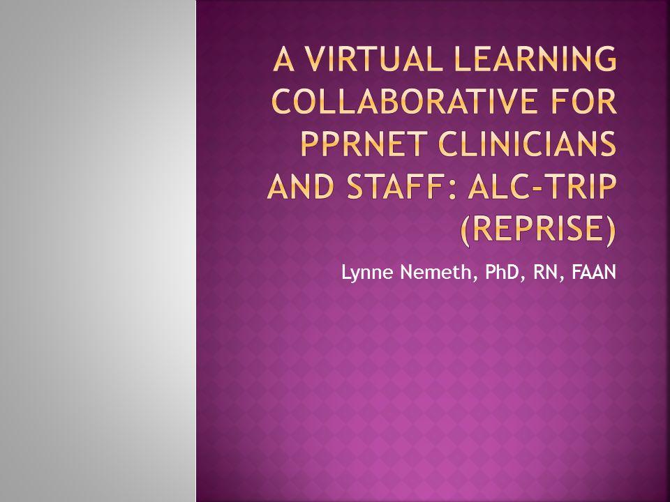 Lynne Nemeth, PhD, RN, FAAN