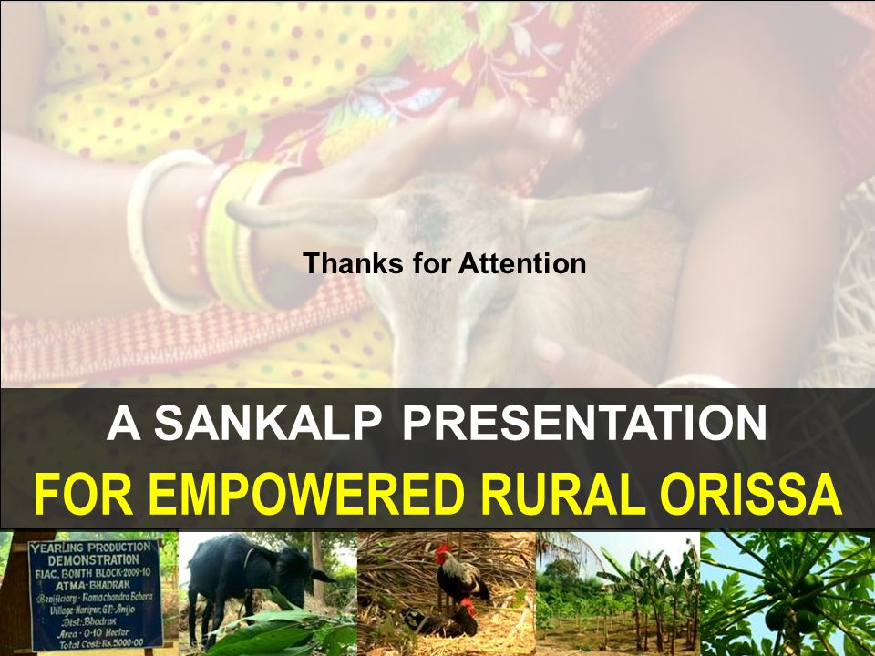 A SANKALP PRESENTATION FOR EMPOWERED RURAL ORISSA Thanks for Attention