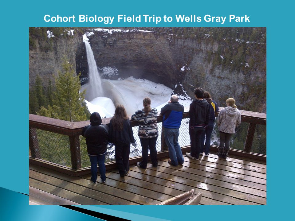 Cohort Biology Field Trip to Wells Gray Park