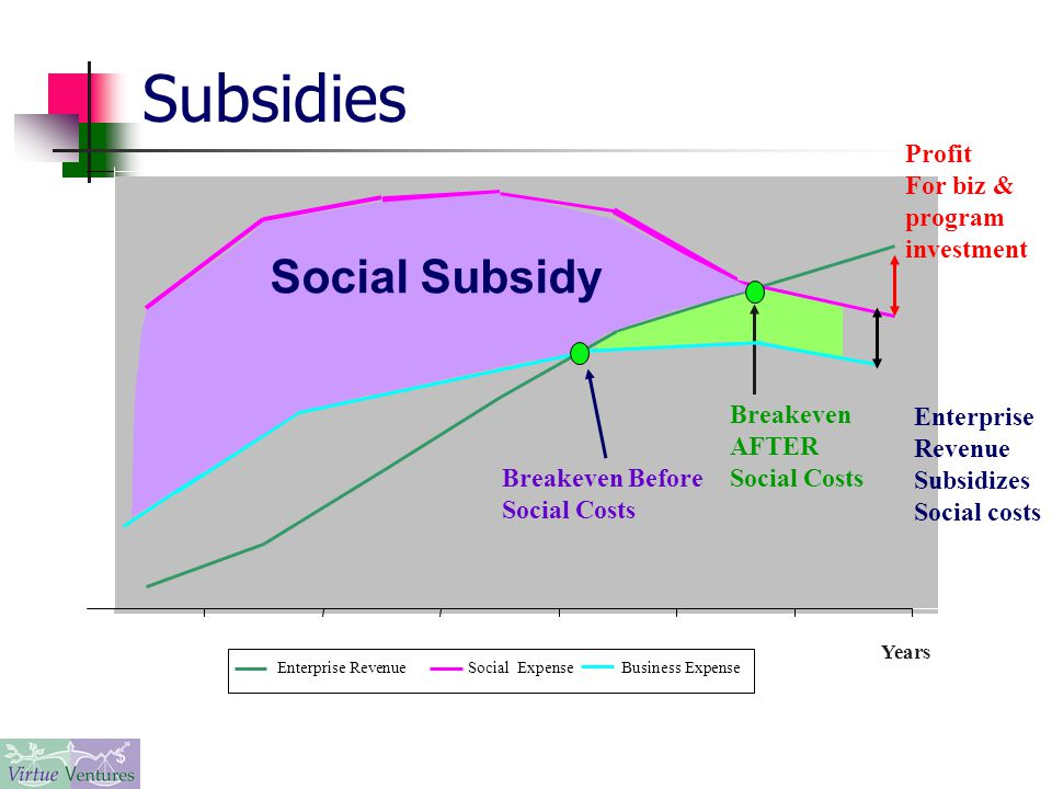 Subsidies Years Enterprise RevenueSocial Expense Business Expense Breakeven AFTER Social Costs Breakeven Before Social Costs Social Subsidy Enterprise Revenue Subsidizes Social costs Profit For biz & program investment
