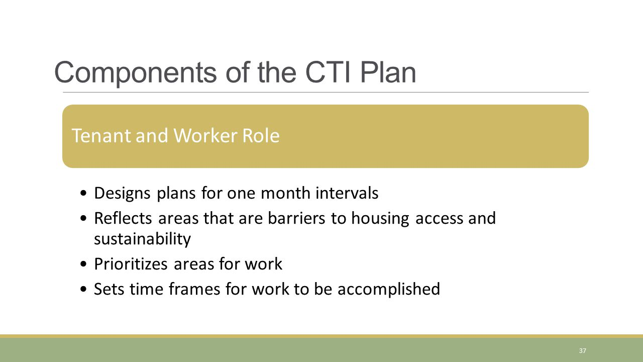 Tenant and Worker Role Designs plans for one month intervals Reflects areas that are barriers to housing access and sustainability Prioritizes areas for work Sets time frames for work to be accomplished Components of the CTI Plan 37
