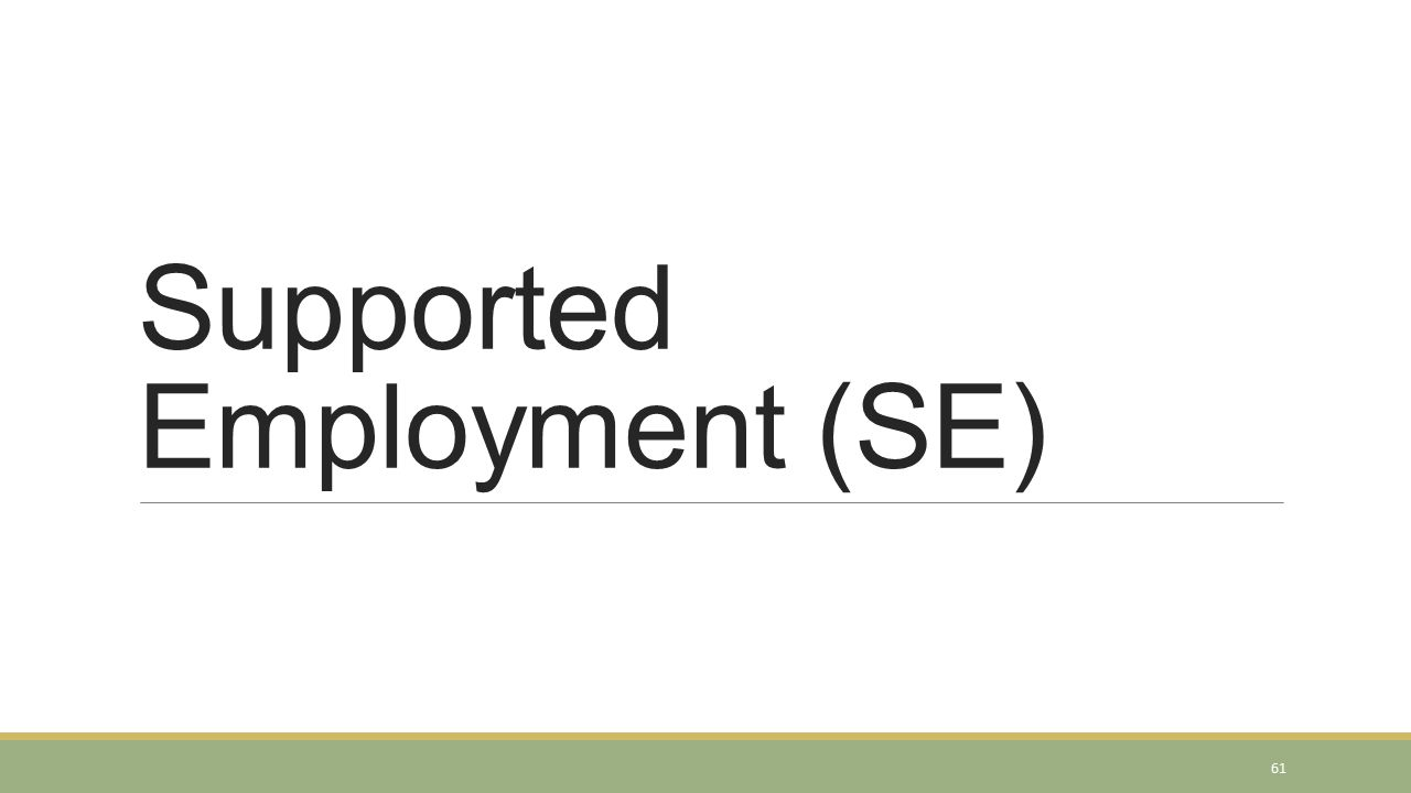 Supported Employment (SE) 61