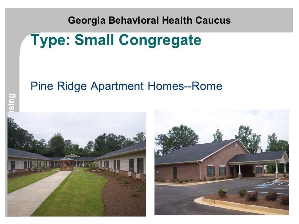 Georgia Behavioral Health Caucus Supportive Housing Type: Small Congregate Pine Ridge Apartment Homes--Rome