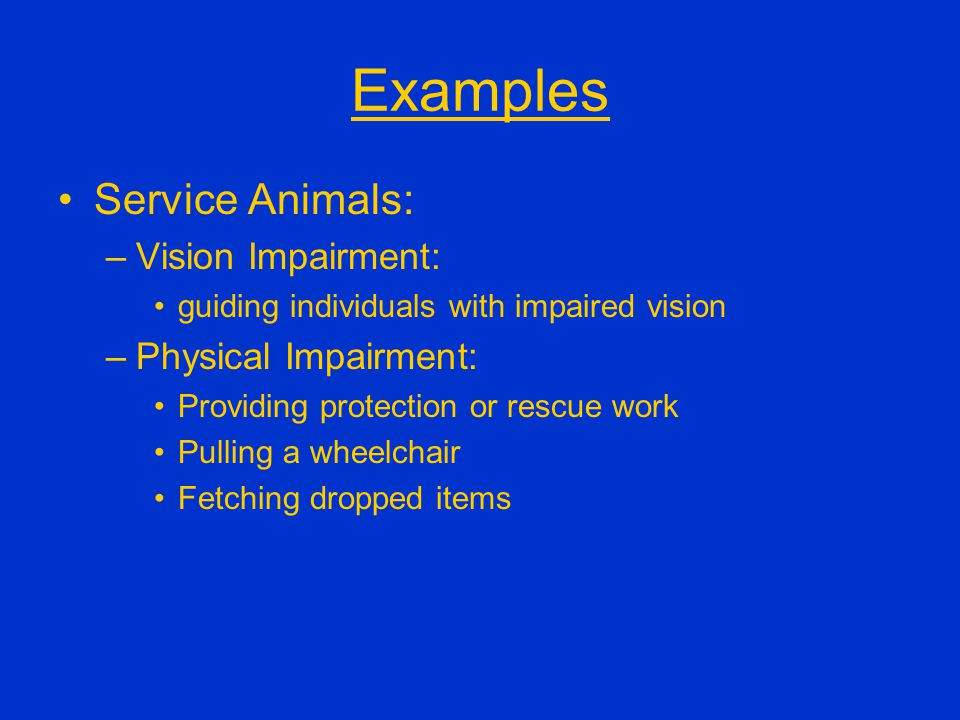 Examples Service Animals: –Vision Impairment: guiding individuals with impaired vision –Physical Impairment: Providing protection or rescue work Pulli