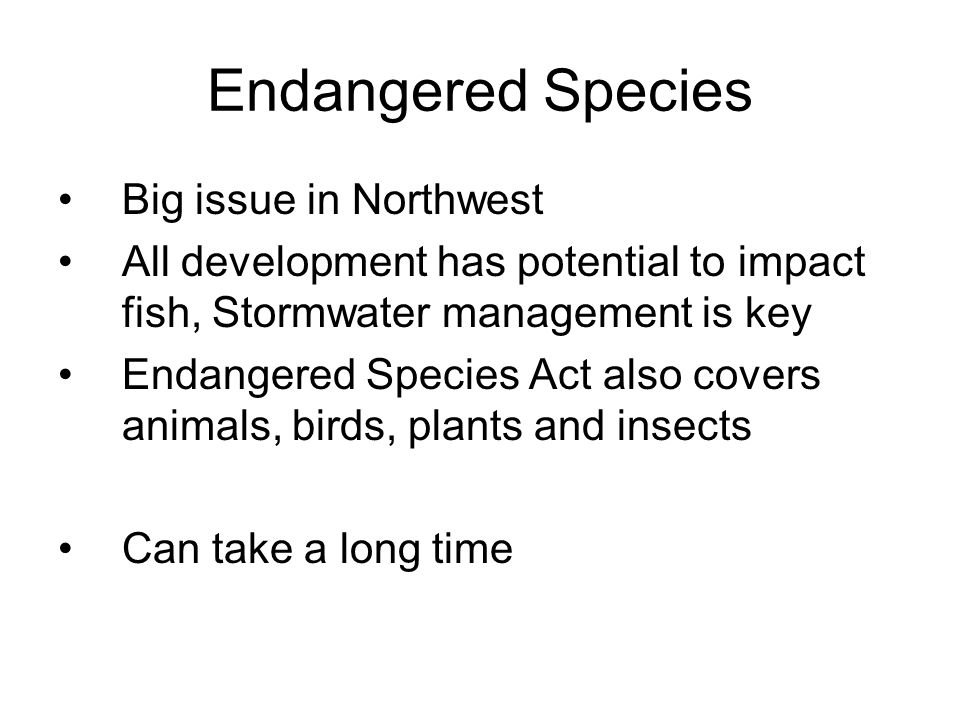 Endangered Species Big issue in Northwest All development has potential to impact fish, Stormwater management is key Endangered Species Act also covers animals, birds, plants and insects Can take a long time