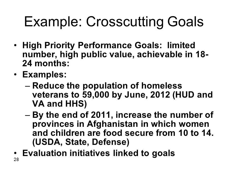 28 Example: Crosscutting Goals High Priority Performance Goals: limited number, high public value, achievable in 18- 24 months: Examples: –Reduce the