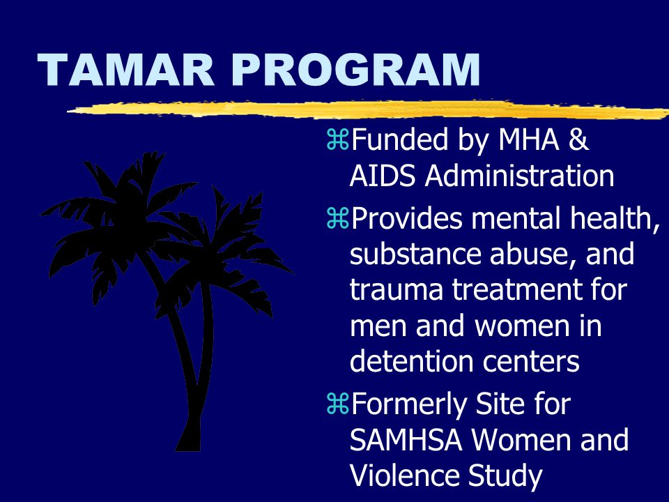 TAMAR PROGRAM z Funded by MHA & AIDS Administration z Provides mental health, substance abuse, and trauma treatment for men and women in detention centers z Formerly Site for SAMHSA Women and Violence Study