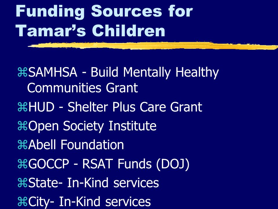 Funding Sources for Tamar's Children zSAMHSA - Build Mentally Healthy Communities Grant zHUD - Shelter Plus Care Grant zOpen Society Institute zAbell Foundation zGOCCP - RSAT Funds (DOJ) zState- In-Kind services zCity- In-Kind services