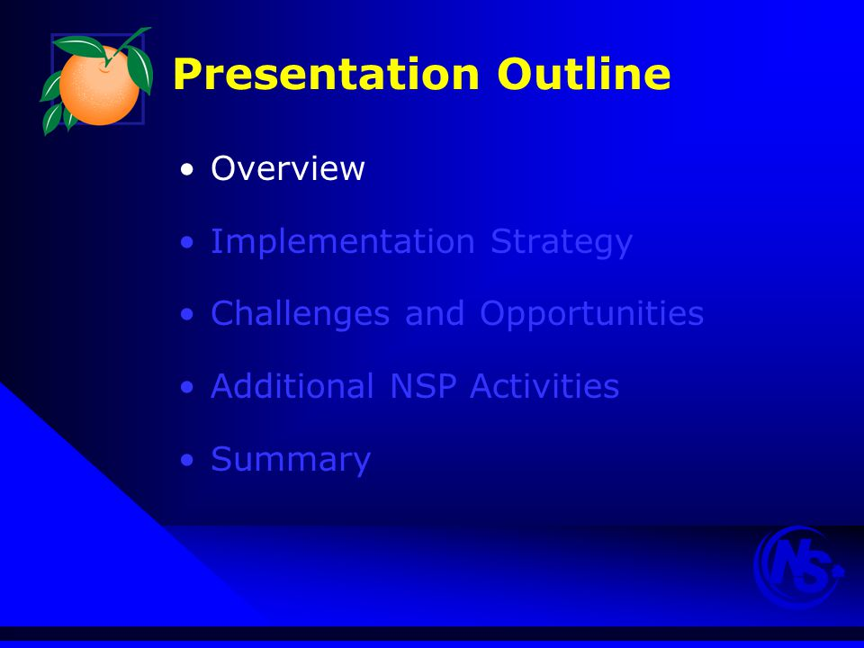 Presentation Outline Overview Implementation Strategy Challenges and Opportunities Additional NSP Activities Summary
