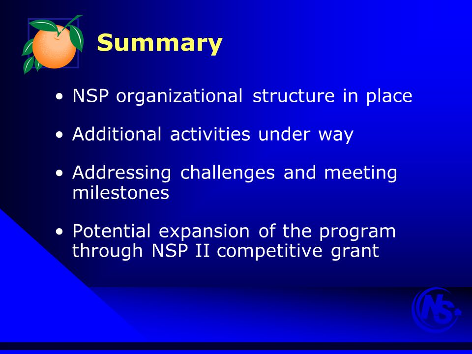 NSP organizational structure in place Additional activities under way Addressing challenges and meeting milestones Potential expansion of the program through NSP II competitive grant