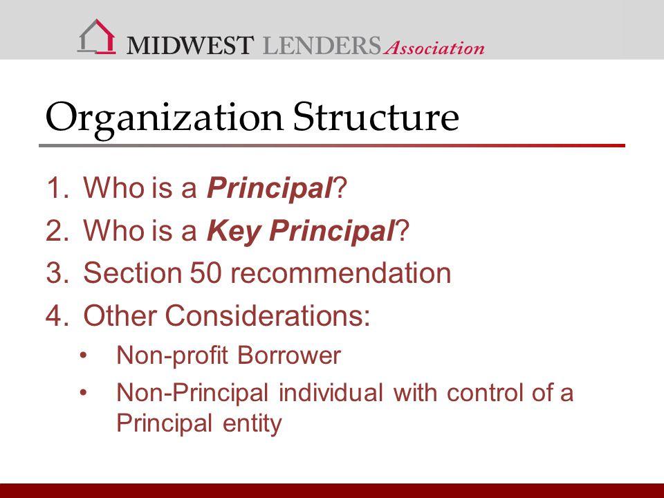 Levels of Review 1.Principal versus Key Principal 2.Entity versus Individual 3.New Construction/Sub-Rehabilitation versus Refinance/Purchase 4.Large Loan Risk Mitigation Policies