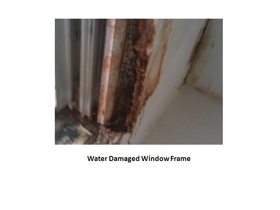 Water Damaged Window Frame