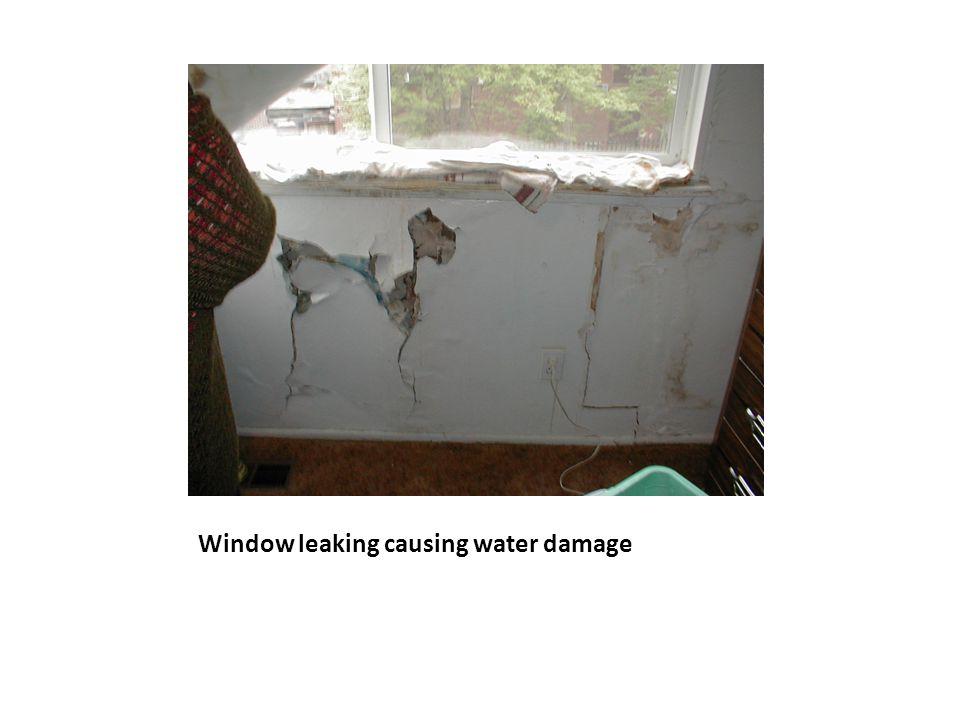 Window leaking causing water damage