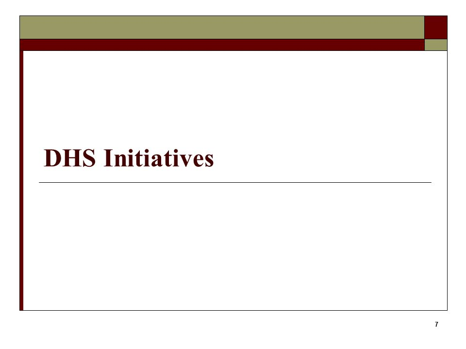 DHS Initiatives 7